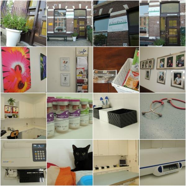 Collage praktijk Leiden - nieuw formaat