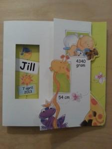 Geboortekaartje Jill