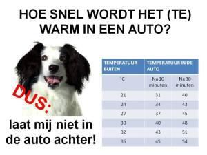 Warm in de auto